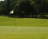 holevlaggen-golfvlag